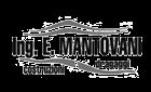 Impresa di Costruzioni Ing. E. Mantovani